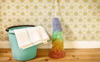 Как отмыть обои виниловые, флизелиновые, жидкие, бумажные моющими средствами: как избавиться от обойного клея, краски, пятен, жира на кухне и другой грязи?