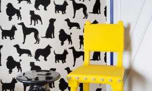 Обои для однокомнатной квартиры расцветки и рекомендации, дизайн стен в хрущевке, какие материалы выбрать для оформления интерьера однушки
